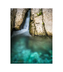 Aheron springs (Christos Andronis) Tags: green water mystery rocks stream afternoon scenic conservation peaceful tranquility calm intimate innerpeace softlight contemplation φύση γαλήνη περιβάλλον μυστήριο ποτάμι βράχια inlandwaters