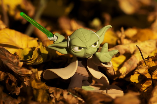 Yoda in the Woods