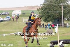 163L_0058 (Lukas Krajicek) Tags: military czechrepublic cz kon koně vysočina vysoina southbohemianregion blažejov dvoreček všestrannost dvoreek