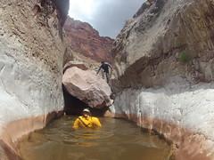 grand canyon2015 075