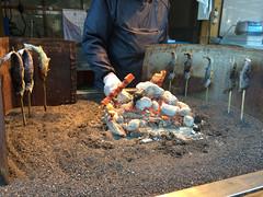 (TonyBSD) Tags: japan nikon falls  nikko dslr grilled  kegon becon d610