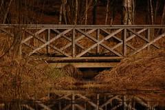 342 (rikkeengelkrmeke) Tags: outdoor nature brigde