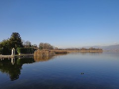 """GALLIATE LOMBARDO - (Varese) - """" EXPLORE """" (cannuccia) Tags: landscape riflessi paesaggi lombardia laghi fabuleuse 100commentgroup galliatelombardo"""