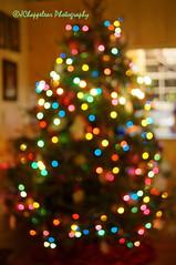 NEX5T_DSC03310-Goodbye15-Hello 16 (Jay514) Tags: christmas tree colors lights bokeh colored