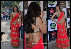 Shilpa Shetty in Manish Malhotra's Lehenga Saree and Gold Sequin Backless Blouse (shaf_prince) Tags: shilpashetty bollywoodactress bollywoodsarees designerwear nachbaliye partywearsarees celebritydresses lehengasaree indianfashiondesigners blousebackneckdesigns blousepatterns blousebackdesigns bollywooddesignerdresses actressinorangedresses backlessblouses sequinblouses blousemodels blouseneckdesigns stylishdesignsforblouse patchworksarees