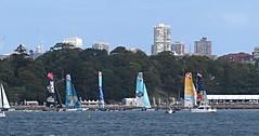 IMG_5763 Extreme Catamaran Racing. (Boat bloke) Tags: canon coast harbor boat sailing waterfront yacht extreme sydney australia racing catamaran sydneyharbour yachting extremesailing sx50hs