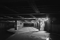Turn not to the right hand, nor to the left (Jamie Barras) Tags: uk winter light england bw white black london dark canal scary under eerie haunted unknown after ironwork waterway girder rivet 2015