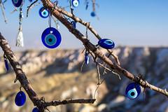 The Evil Eye Tree - Cappadocia (jasonkb) Tags: travel blue winter sun tree history turkey branch pigeons trkiye culture christian valley historical christianity cappadocia evileye kapadokya travelphotography pigeonvalley greekeye turkisheye birthplaceofchristianity paganeye