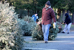31st annual Scouts Tree Drive (issreporter) Tags: sammamish