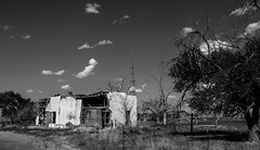 (unknown quantity) Tags: monochrome clouds sky deadtrees fence shadows brokenwalls fadedpaint openwindows deterioration crumbling weathered exposedwood antenna abandonedbusiness blackandwhite underbrush