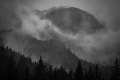 Natural Influence (West Leigh) Tags: alaska mountains mountaineering seward blackandwhite mist atmosphere cloud hill forest trees nature naturalbeauty wanderlust wander explore ruggen dream discover inspire