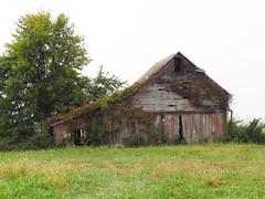 IMG_9869-1 Knox County Indiana (John Pohl2011) Tags: sx50hs canonsx50hs canon john pohl farm outbuilding country