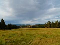 SCHWARZWALD IM HERBST (ehbub@yahoo.de) Tags: schwarzwald tannenbaum laubbaum herbst wiese berge fernsicht