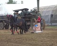 video Fun-vehicles I (Mc Steff) Tags: video museum kiemele 2016 seifertshofen pferd pferde horse horses sofa couch schlitten pferdeschlitten pferdeschlittensofas funvehicles funfahrzeuge