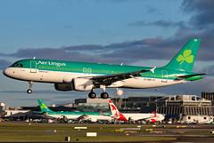 EI-DEB (GH@BHD) Tags: eideb airbus a320 ei ein aerlingus shamrock dub dublinairport dublininternationalairport dublin airliner aircraft aviation