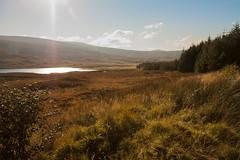 View from Lubmore (duncan_ireland) Tags: lubmore achnasheen scotland autumn loch lochan