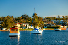 IMG_0506-2 (Scart Photography) Tags: valentine lakemacquarie