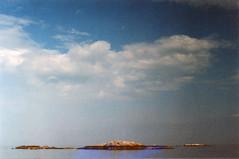 Swimming in sevens (Kelly Marciano) Tags: film analog 35mm canona1 cinestill 800 tungsten analogue filmgrain xpro crossprocessed slidefilm weirdlightleak sea ocean beach sky scituatema minotbeach walksonthebeachwithmum queerhorizons