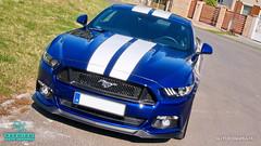 Mustang_01 (holloszsolt) Tags: ford mustang 50 outdoor vehicle sport car nanolex si3 hd autokeramia