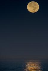 Changing Shape (ihikesandiego) Tags: beaver moon super la jolla ocean fullmoon