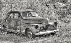 Out Back (magnetic_red) Tags: car old rusted derelict bushes abandoned forgotten sign gas texaco blackandwhite