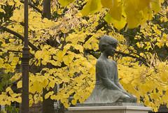 Melancola en otoo - Reto Tristeza (Micheo) Tags: plazadebibataubn otoo autum amarillo dorado golden ojas arboles leaves trees retotristeza elblogdelfotgrafo tristeza triste sad sadness nia chica girl