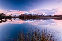 Dusky Assynt (Stoates-Findhorn) Tags: 2016 a835 assynt culbeag culdromannan dusk landscape loch scotland snow stacpollaidh sunset reflections unitedkingdom