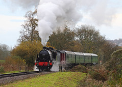 Swanage Local (Treflyn) Tags: southern railway u class 260 31806 tinbath swanage timeline events photo charter
