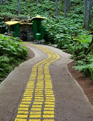 Yellow Brick Road (Melissa Buteau) Tags: forest canon bc revelstoke enchanted the