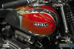 ariel-square-four-201503-web-20
