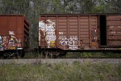 _MG_3236 (Revise_D) Tags: graffiti trains graff d30 freight revised trainart fr8 wyse bsgk a2m wge benching fr8heaven fr8aholics benchingsteelgiants