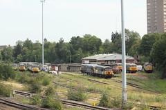 UK Rail, Leicester Depot (Paul Emma) Tags: uk railroad england train leicestershire leicester railway depot ukrail dieseltrain class56 37906 56006 56007 56031 56032 56065 56081 56069 56106 56104 56098 56301 86235 56038