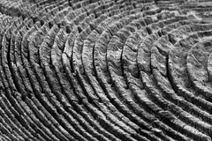 Corrugation (Ian Sane) Tags: camera wood two white lake black macro texture oregon canon lens ian photography eos is post mark decay images ii 5d barrier usm corrugation sane vernonia f28l ef100mm