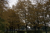 Floriade_251015_15 (Bellcaunion) Tags: park autumn fall nature zoetermeer rokkeveen florapark