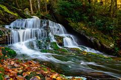 20151011 WV Elakala Falls In The Fall054 (Dan_Girard_Photography) Tags: mountains fall nature water season landscape rocks smooth falls wv flowing silky 2015 elakalafalls dangirardphotography