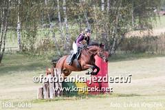 163L_0018 (Lukas Krajicek) Tags: military czechrepublic cz kon koně vysočina vysoina southbohemianregion blažejov dvoreček všestrannost dvoreek
