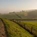 Hughenden Manor Walks