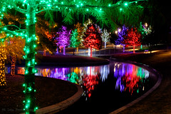 Vitruvian Lights Dec 2015 (d-day buff) Tags: trees holiday night lights addison vitruvianpark vitruvianlights