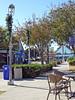 Coronado 12-17-15 (87) (Photo Nut 2011) Tags: california sandiego coronado ferrylanding