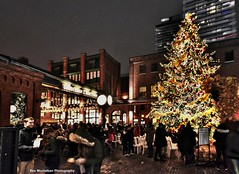 Merry Christmas (Rex Montalban Photography) Tags: christmas toronto distillerydistrict market hdr rexmontalbanphotography