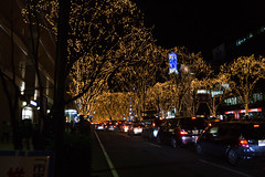 DSC03205.jpg (randy@katzenpost.de) Tags: winter japan sendai miyagiken sendaishi japanurlaub20152016
