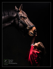 Holly & Diesel (Stuart Leche) Tags: child equestrian equine flashlighting girl horse red wwwequinestudiophotography