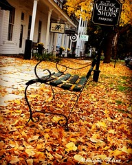 Autumn in Vermont (moniquef123) Tags: autumn fall fallfoliage vermont bench town season yellow nature newengland