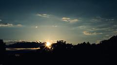 15.5.17_Provia100_CanonA1_036 (dannbis) Tags: 135 analog badenwürttemberg canona1 fujifilmprovia100 germany sunset überlingen アナログ フィルム レンジファインダー 胶片 geocountry camera:make=canon camera:model=a1 geolocation exif:model=a1 geocity geostate exif:make=canon