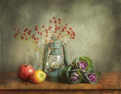 Autumn Still Life With Brassica and Rose-Hip (vesna1962) Tags: stilllife tabletop autumn brassica rosehip oillamp pomegranate persimmonfruit textured