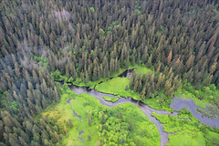 Tongass National Forest (erinwilt) Tags: alaska ak pilot nature outdoors misty fjords beautiful wildlife flying flight aeroplane airplanes canon rebel photography canonrebelphotography redhead adobe photoshop national monument forest trees woods tongass plane floatplane copilot smile people denali ketchikan clouds water sea ocean glaciers glacial valley mountains mountain range colorful inspiration nikon inspirational amazing landscape waterfalls rain storm jet jetplane airforce airman air cloud weather