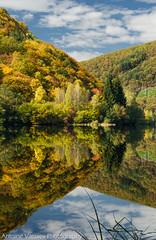 / Pasarel reservoir (AVasilev) Tags:           autumn fall colors trees forest lake water reservoir pasarel bulgaria