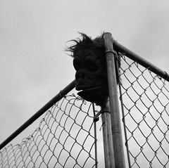 Portland (austin granger) Tags: portland oregon gorilla mask chainlink fence spooky nightmarish square evidence film gf670 animal