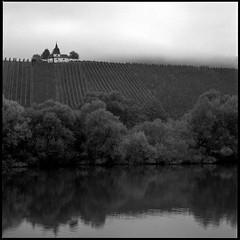 *** la chapelle *** (Stefan Lux) Tags: chapel fog blackwhite hasselblad 500cm sonnar 150mm ilford panf landscape vineyard moselle river morningmist autumn