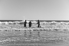 Three To Get Ready (uselessbay) Tags: 2016 beach ilforddelta100 middletown nikon nikond700 places rhodeisland secondbeach uselessbayphotography williamtalley blackandwhtie d700 fullframe landscapes uselessbay water
